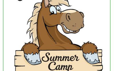 Summer Camp at Grand Farms