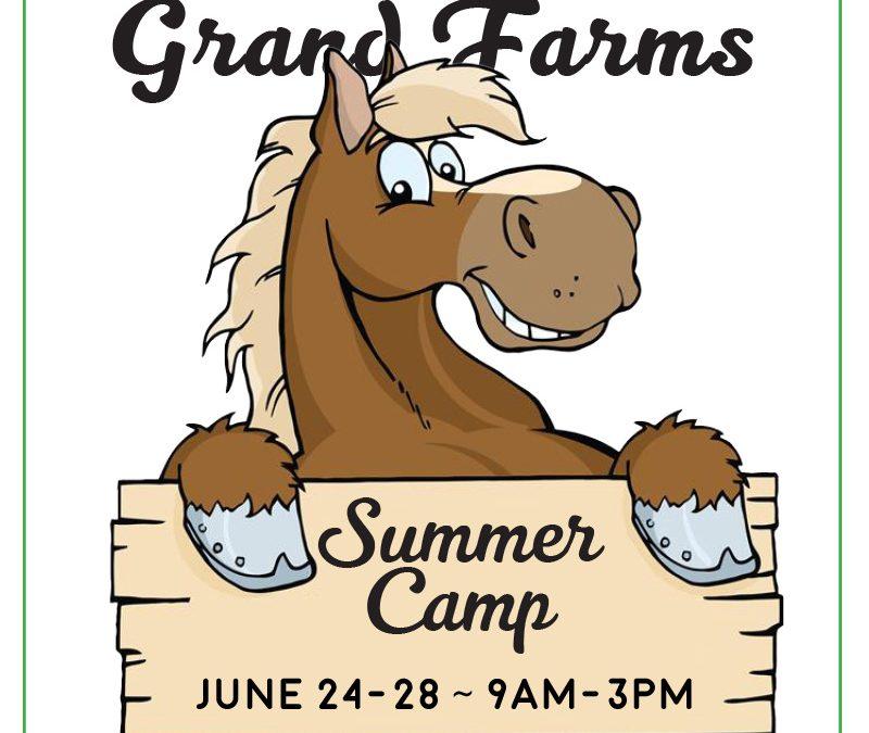 Summer Camp at Grand Farms